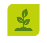 icon of growing sprout on organic compost page