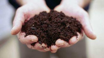Premium Organic Compost DairyGrow Actual Product Image